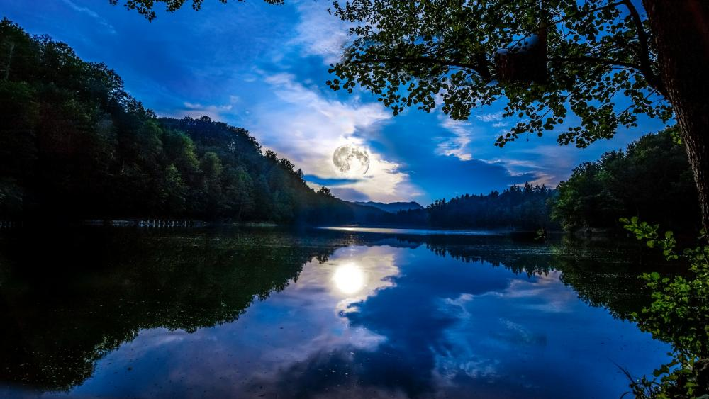 Full moon mirrored in the water wallpaper