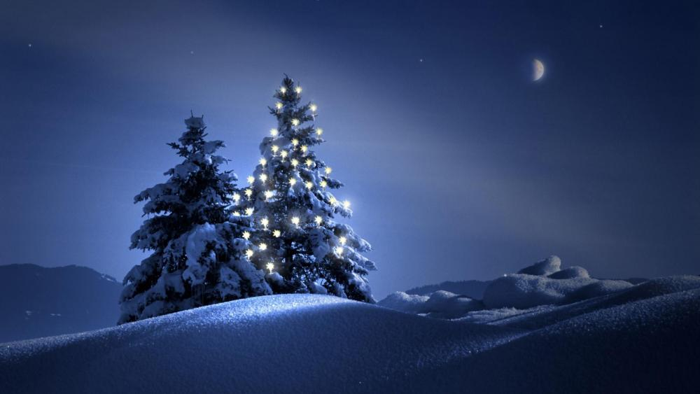 Christmas tree in the snow at night wallpaper