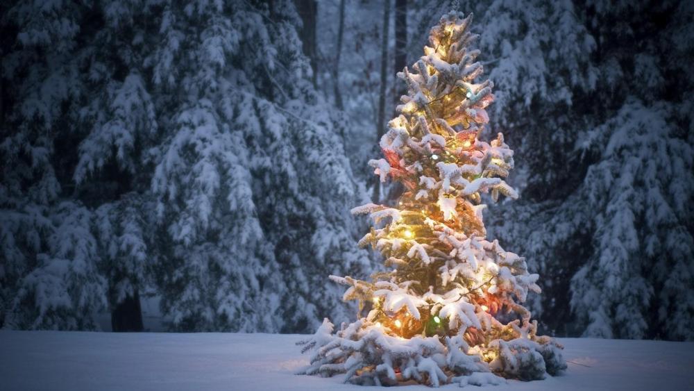 Christmas treein the snow wallpaper