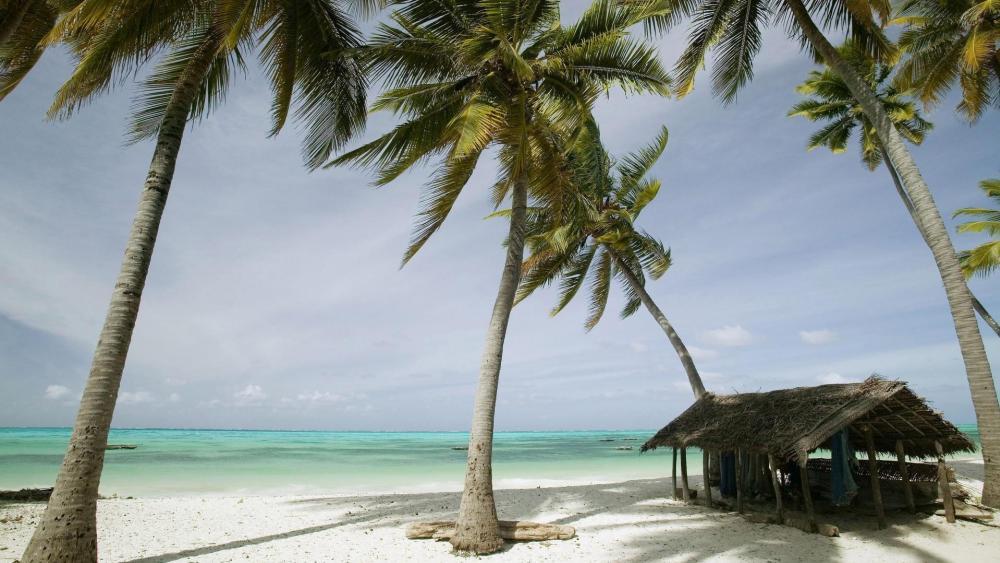 Old hut on the beach - Jambiani, Zanzibar wallpaper