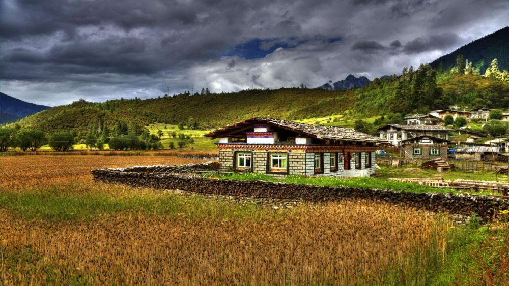 Highland barley and Tibetan residence wallpaper