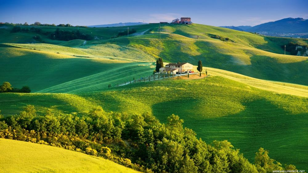 Rolling green hills of Tuscany, Italy wallpaper