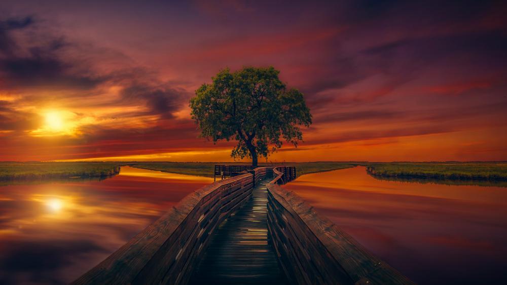 Wonderful fantasy sunset reflection wallpaper