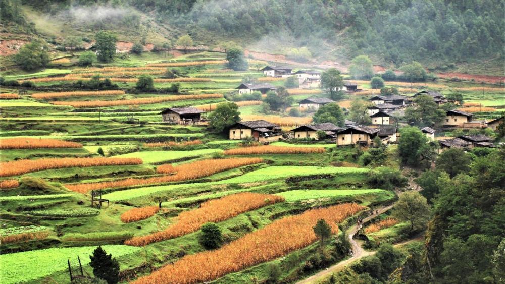 Lower Niru village - Shangrila, Yunnan, China wallpaper