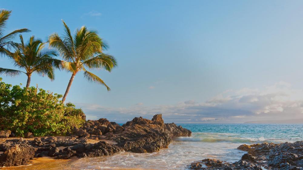Makena Cove beach - Maui, Hawaii  wallpaper