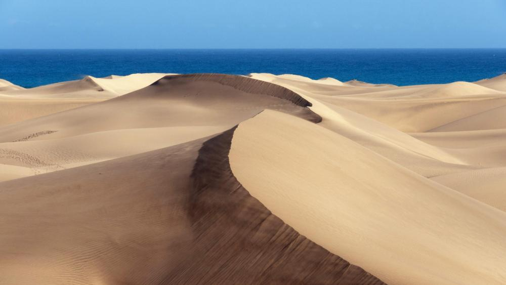 Maspalomas Dunes - Gran Canaria (Spain) wallpaper