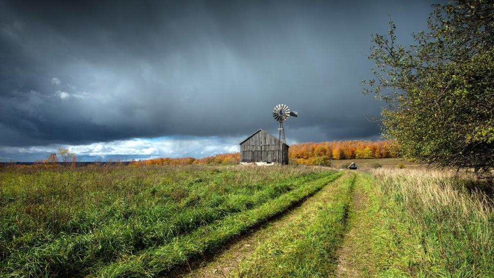 Farm with a windmill wallpaper