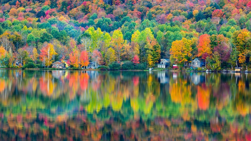 Autumn at the Lake Elmore, Vermont wallpaper