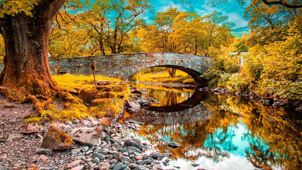 Autumn foliage above the stone bridge  wallpaper