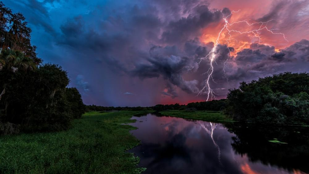 Lightning reflected in bayou wallpaper