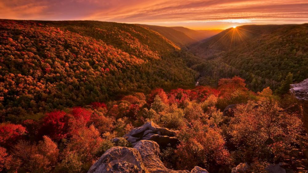 Autumn at Blackwater Falls State Park West Virginia wallpaper