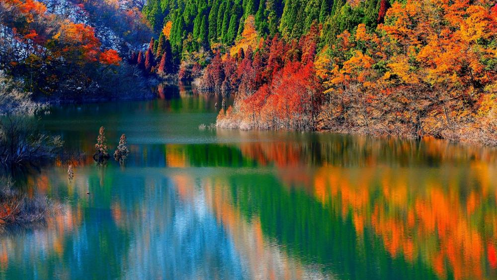 Mountain lake in the autumn forest wallpaper