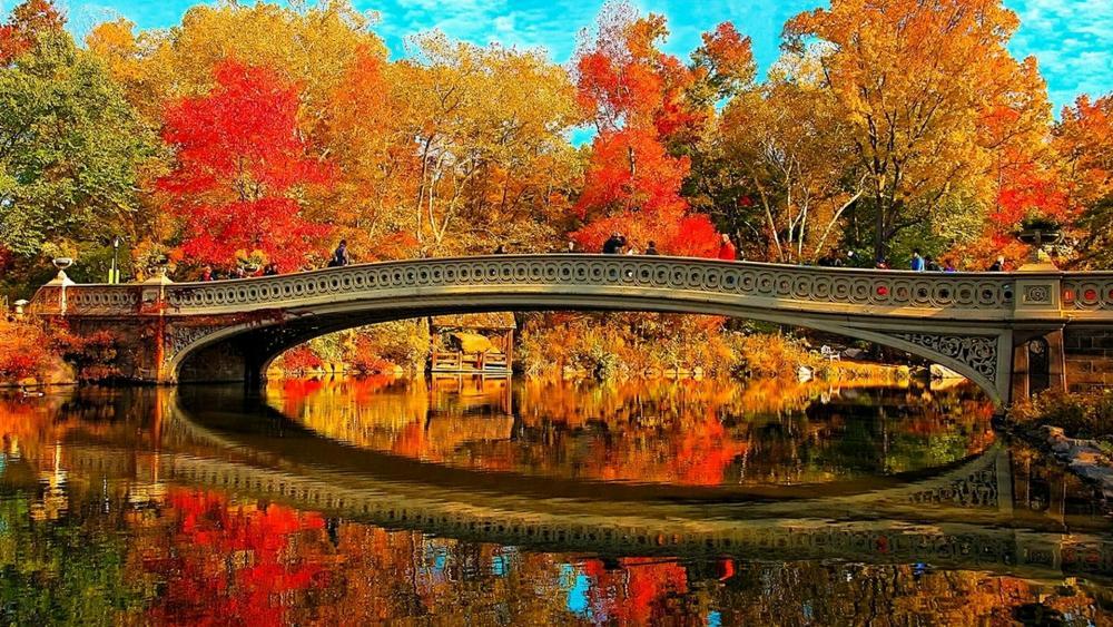 Bow Bridge (Central Park) wallpaper