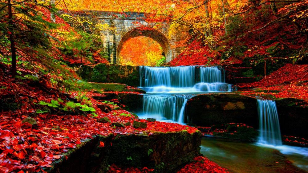 Autumn waterfall in the forest  wallpaper