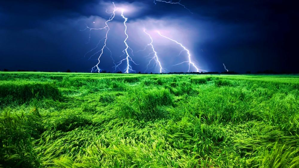 Llightning storm over the wheat field ️ wallpaper
