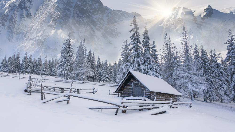 Little shack winter landscape wallpaper