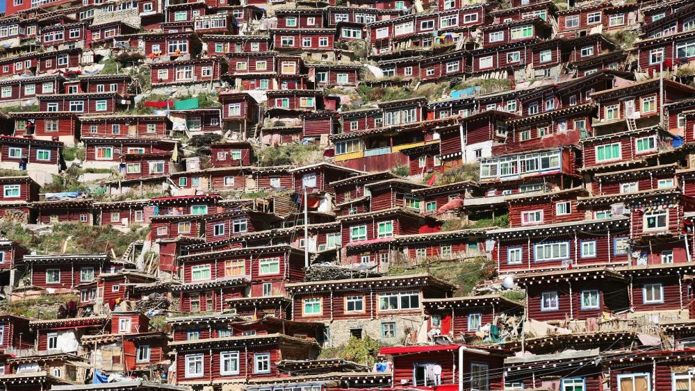 Larong Wu Ming Buddhist Academy in Serthar, Tibet wallpaper