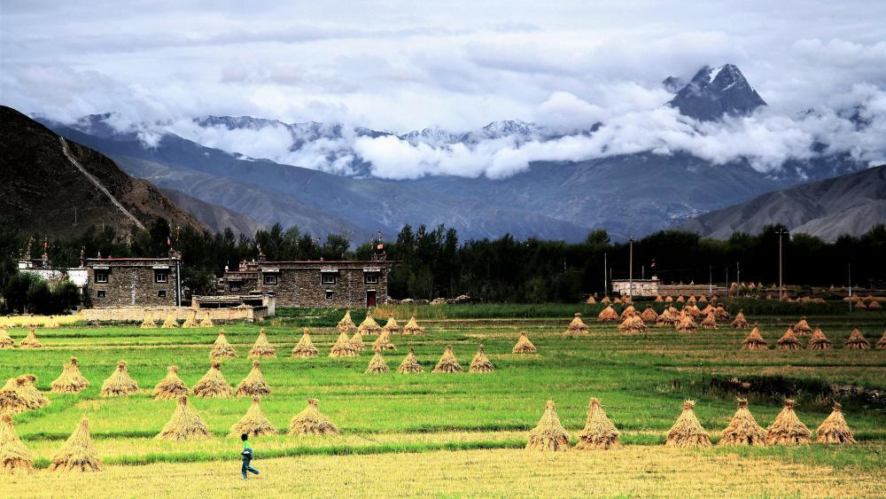 Tibetan village wallpaper
