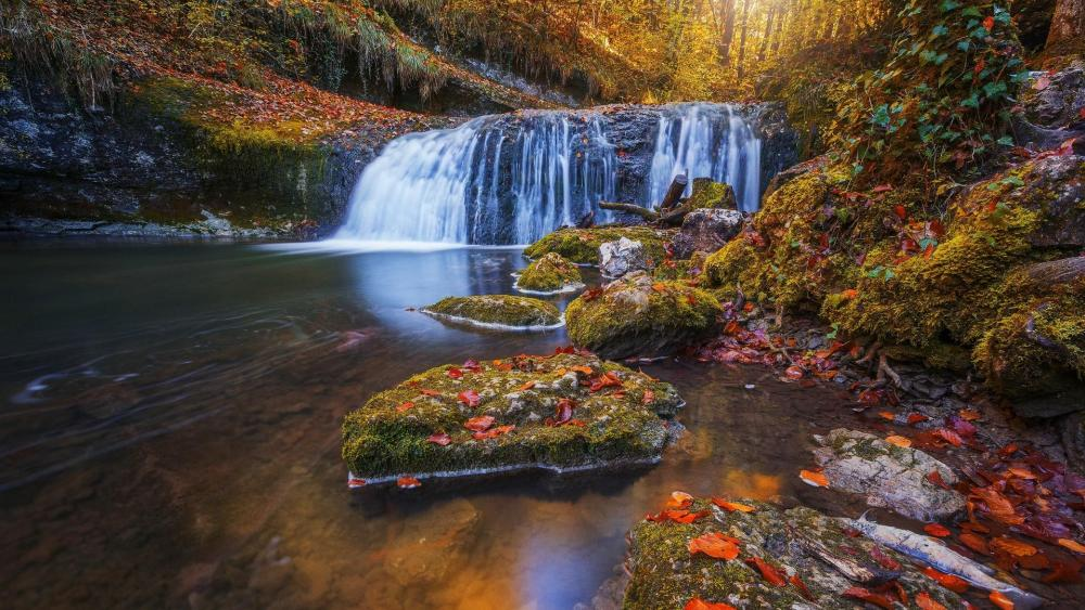 Waterfall in the autumn forest wallpaper