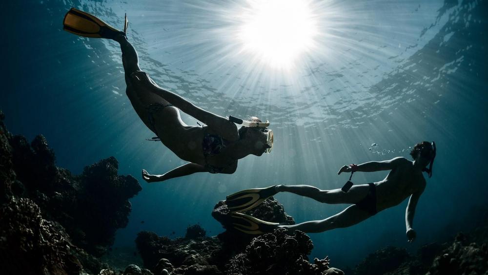 Divers wallpaper
