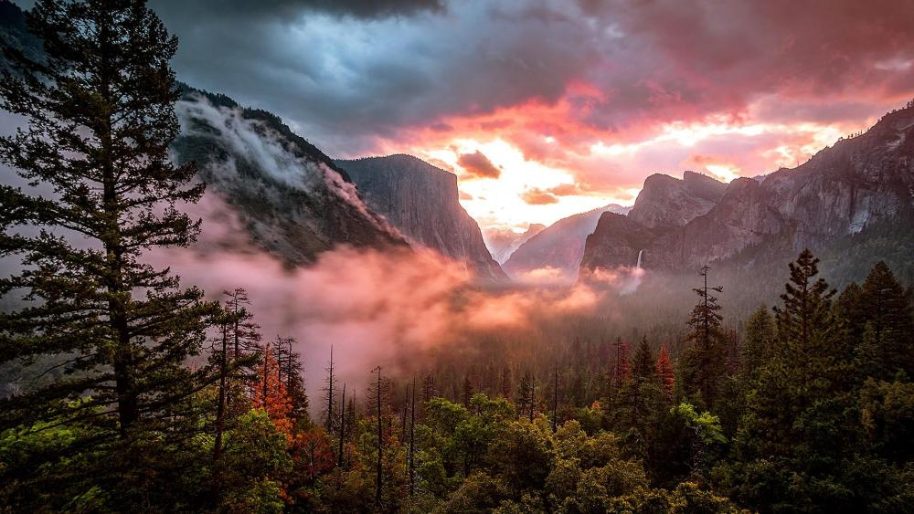 Misty Yosemite Valley wallpaper