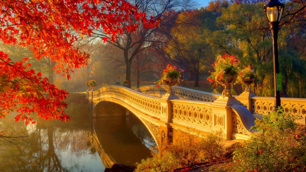 Bow Bridge - Central Park wallpaper