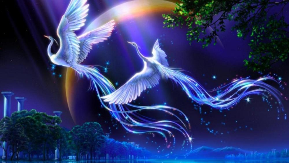 Birds of Paradise - Fantasy art wallpaper