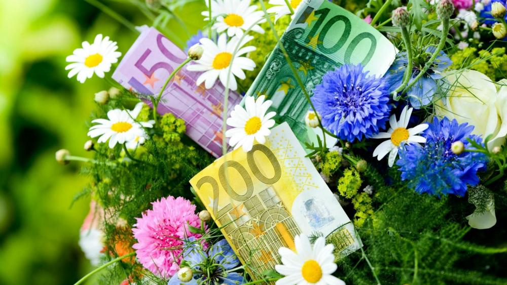 Euros in the bouquet wallpaper