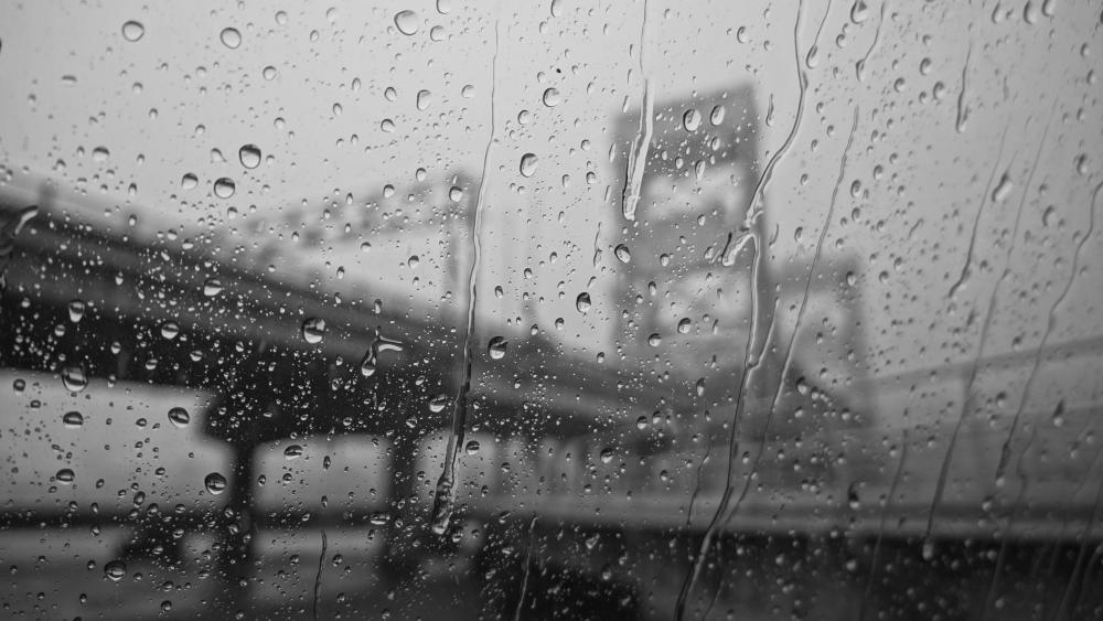 Rain in city wallpaper