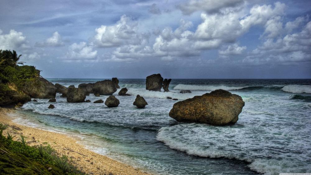 Barbados beach wallpaper