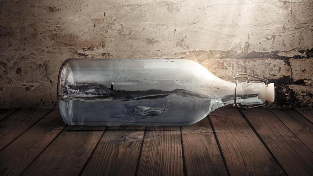 Fish in the bottle - Fantasy art wallpaper