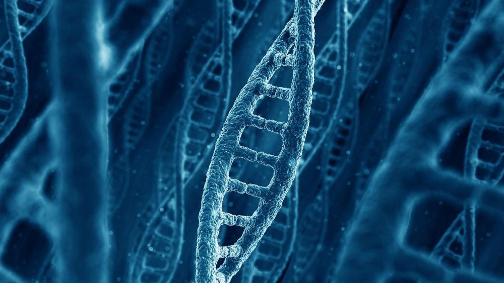 Human gene wallpaper