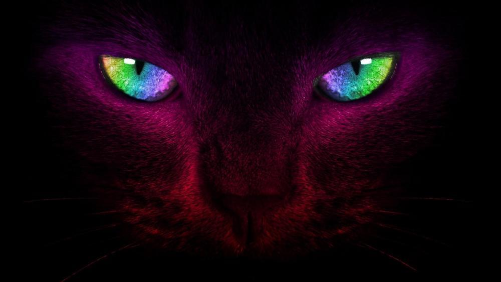 Cat eyes - Digital art wallpaper