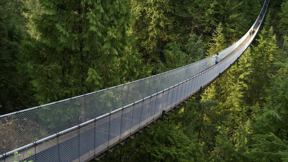 Capilano Suspension Bridge - Capilano Suspension Bridge Park, Canada wallpaper