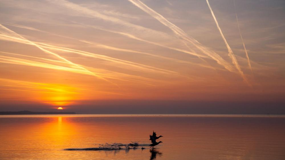 Sunrise over the Lake Balaton wallpaper