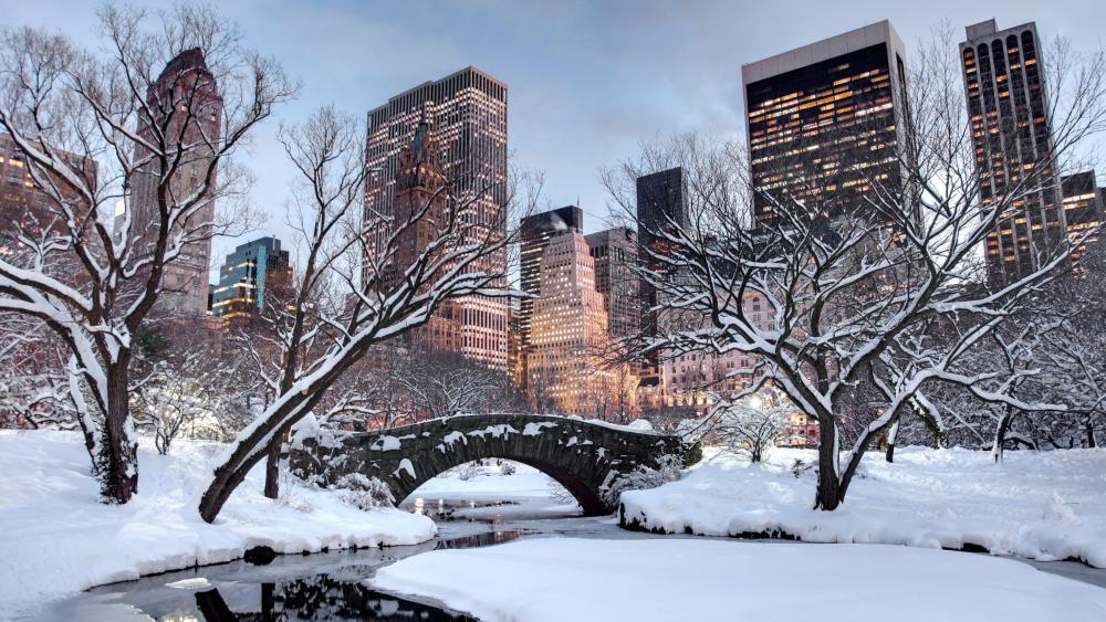 Snowy New York wallpaper
