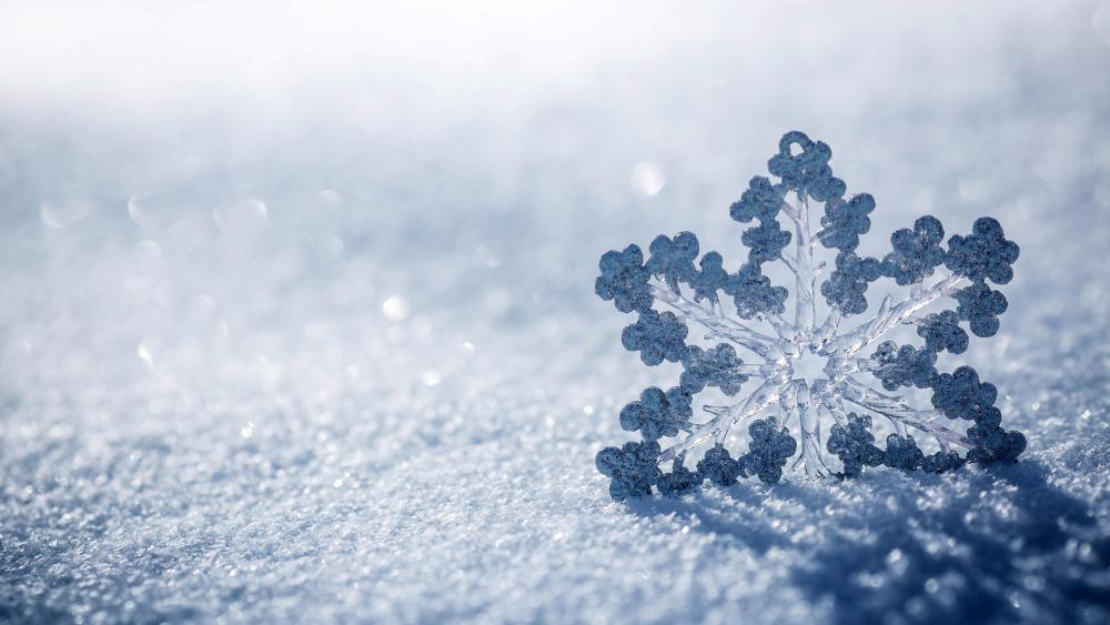 Snowflake in the snow wallpaper
