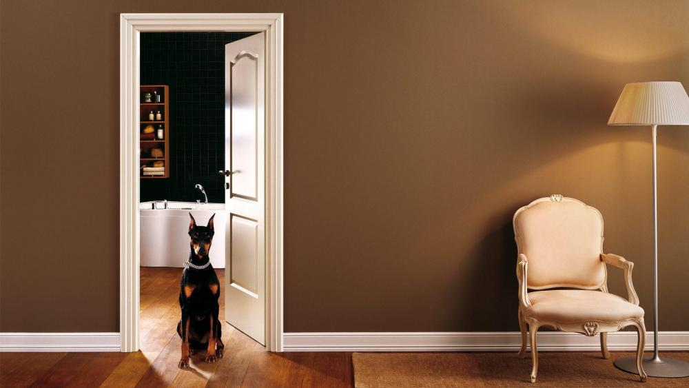 Old styled room with a dog wallpaper