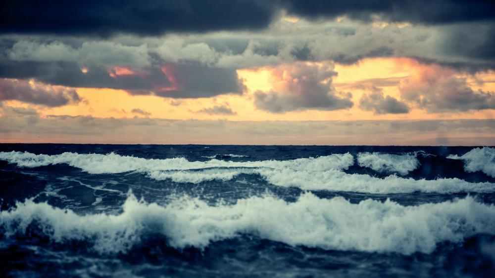 Ocean wind waves wallpaper