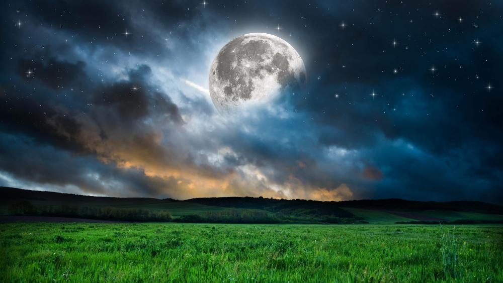 Full moon over the grass field wallpaper