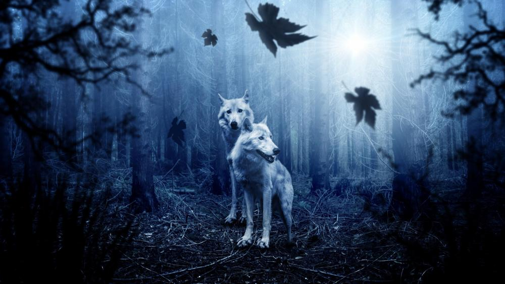 White wolves in the dark forest wallpaper