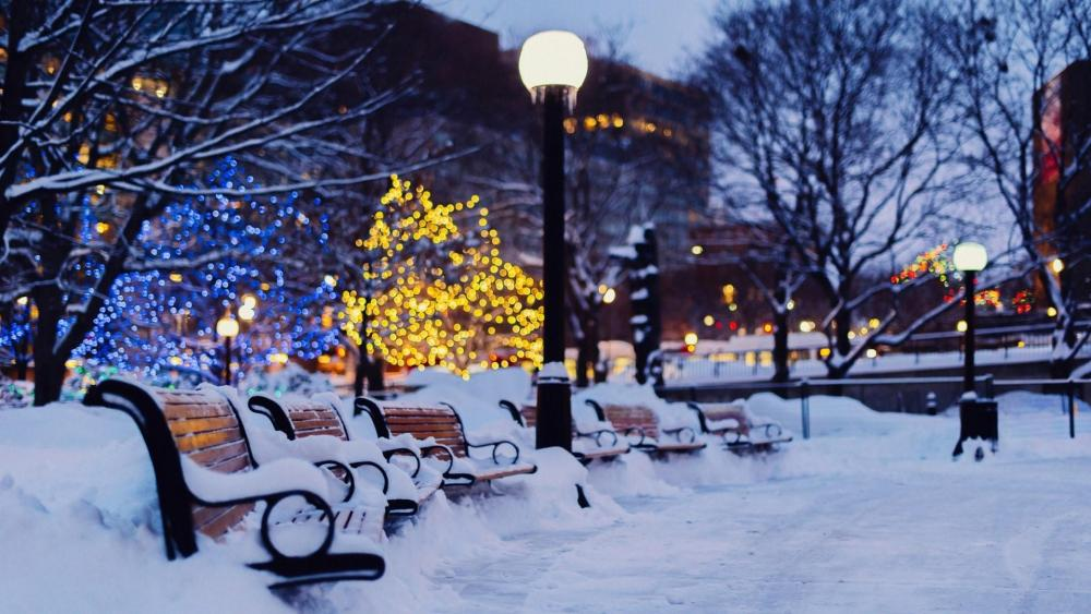Christmas lights in the snowy park wallpaper
