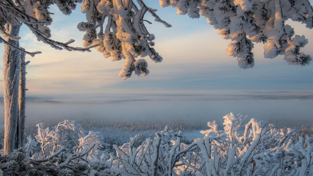 Snowy Lapland - Ylläs in winter (Finland) wallpaper