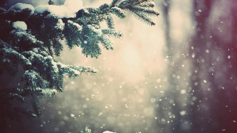Christmas Day snowfall wallpaper
