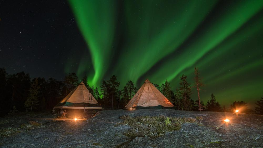 Green Northern Lights in Lapland wallpaper