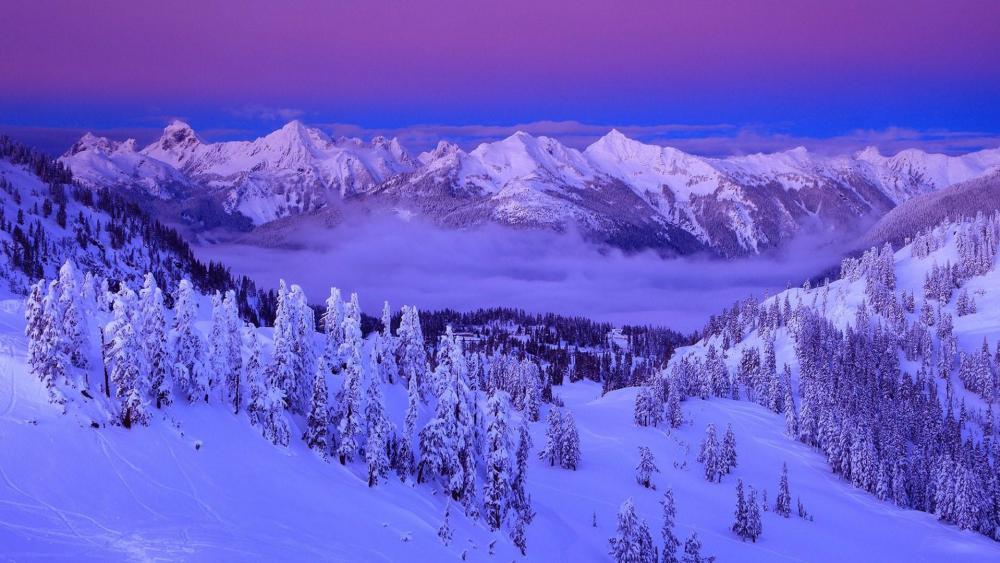 Snowy winter landscape wallpaper