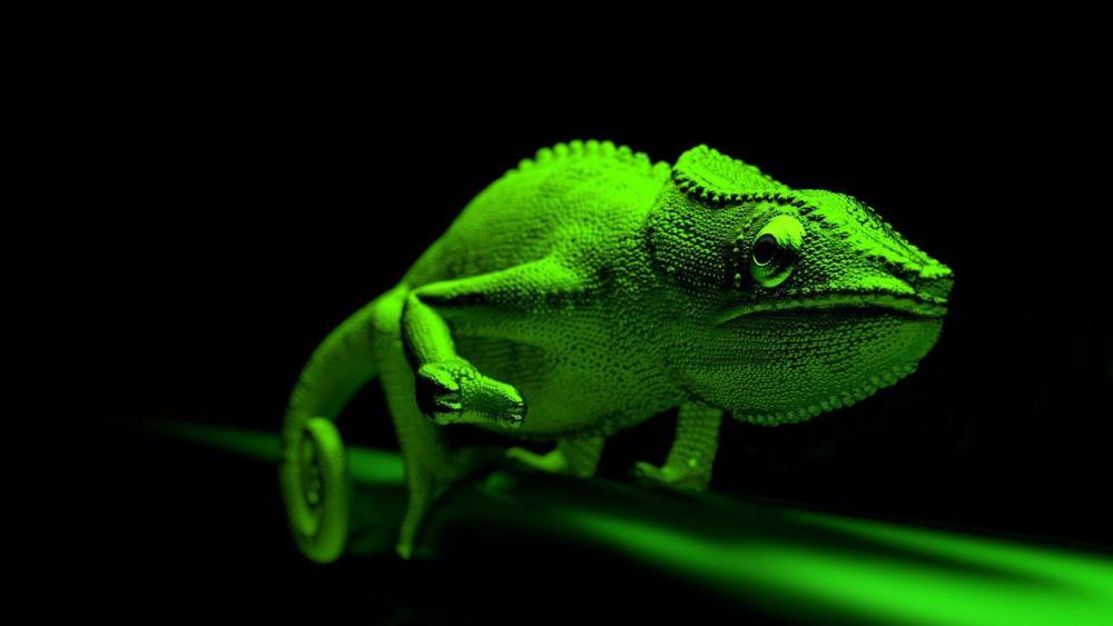 Green chameleon - 3D computer graphics wallpaper