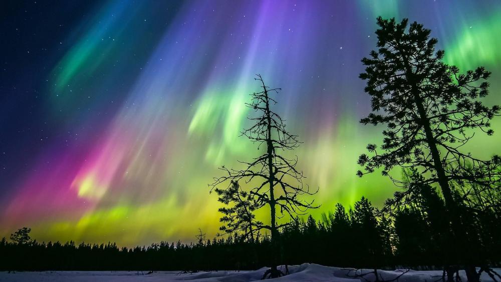Northern Lights - Finland wallpaper
