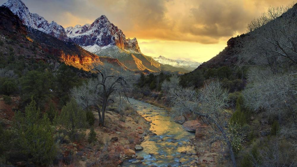 Autumn frost in Zion National Park wallpaper