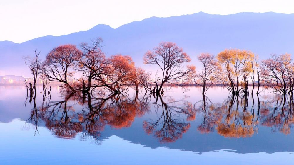 Huanglong Pond redlection (Heqing, China) wallpaper